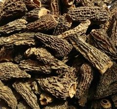 Dried Morchella Esculenta