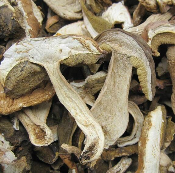 Dried Boletus Edulis sliced 1