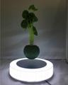 led light magnetic floating levitating air bonsai pot planter tree 0-500g 5