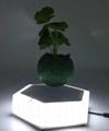 led light  magnetic flying levitation floating air bonsai pots with led light 4
