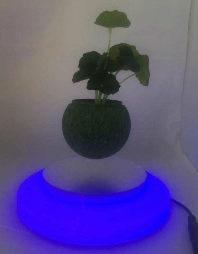 magnetic floating plant display stand with led light 0-300g 2