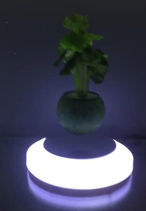 magnetic floating plant display stand with led light 0-300g 3