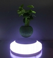 magnetic floating plant display stand with led light 0-300g 4