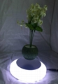 magnetic floating plant display stand with led light 0-300g 5