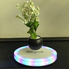 new 360 rotating magnetic levitating air bonsai pot plant tree for decor