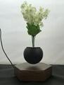 rotating hexagon magnetic floating levitation  air bonsai pot planter for gift  4