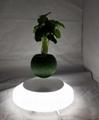 rotating hexagon magnetic floating levitate air bonsai pot planter for gift  2