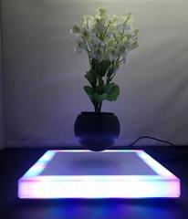 led light square base magnetic floating levitate bottom air bosnai tree