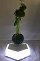 led light  magnetic flying levitation floating air bonsai pots with led light 6