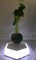 led light  magnetic flying levitation floating air bonsai pots with led light 7