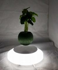 magnetic floating levitation air bonsai flowerpot plant