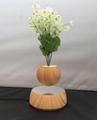 rotating wooden magnetic levitation air bonsai planter tree