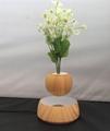 magnetic floating levitation  air pot bonsai for christmas gift New Arri