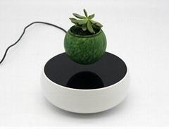 new spining ceramic magl