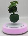 red led light magnetic floating levitating planter bonsai tree for gift 0-500g