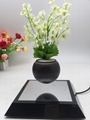 new rotating magnetic levitate potted plant tree floating air bonsai