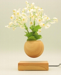 wooden base Levitating Air Bonsai Flower Plant Pots In Office for Business Gifts