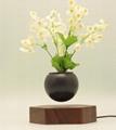 rotating hexagon magnetic floating levitation  air bonsai pot planter for gift