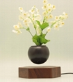 rotating hexagon magnetic floating levitation  air bonsai pot planter for gift  1