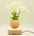 magnetic levitate floating  levitation  air bonsai pot planter tree