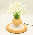 magnetic floating levitate air bonsai tree pot planter for gift