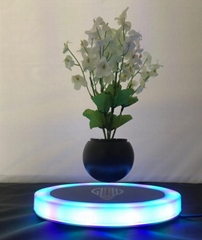 oval shape magnetic floating levitation  air bonsai flower for christmas gift