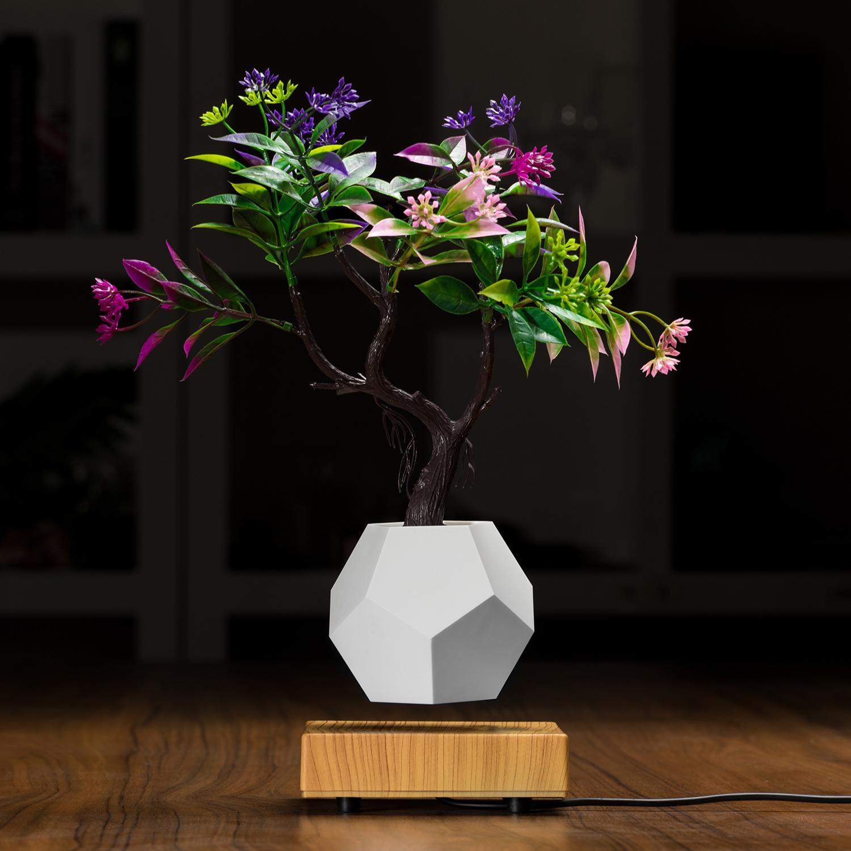 wooden levitating pot  air bonsai pot planter