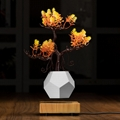 wooden flyte  magnetic levitating pot  air bonsai pot planter  2