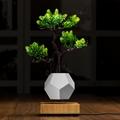 wooden flyte  magnetic levitating pot  air bonsai pot planter  3