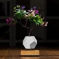 wooden flyte  magnetic levitating pot  air bonsai pot planter  4