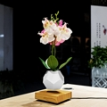 wooden flyte  magnetic levitating pot  air bonsai pot planter  5