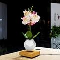 NEW 360 rotating magnetic levitation air bonsai tree flyte