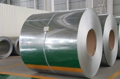 galvanized steel coil  GI