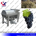 China Direct Manufacturer Grape
