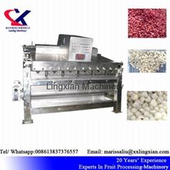High Quality Lychee Processing Machine Litchi Peeling Machine