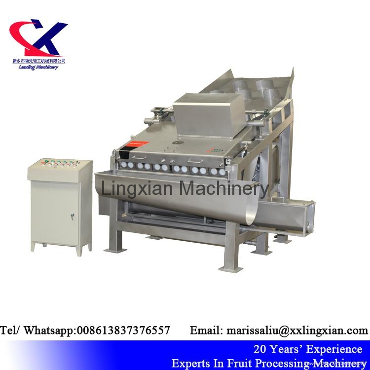 High Quality Lychee Processing Machine Litchi Peeling Machine 3