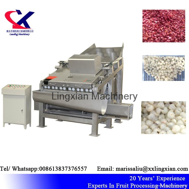 High Quality Lychee Processing Machine Litchi Peeling Machine 4