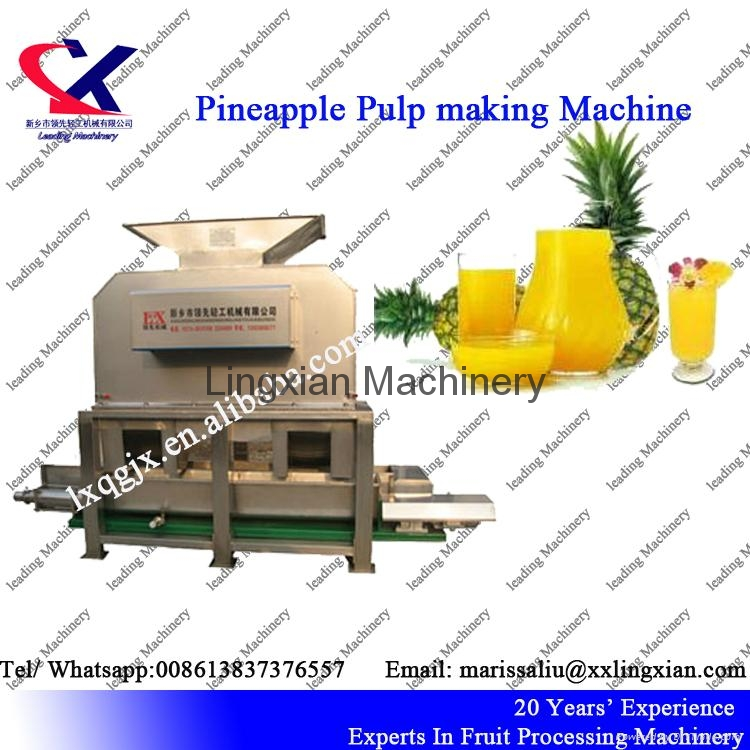 Low Price Industrial Pineapple Juice Production Line  1