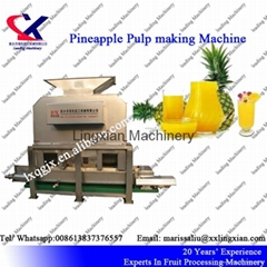 Low Price Industrial Pineapple Juice Production Line