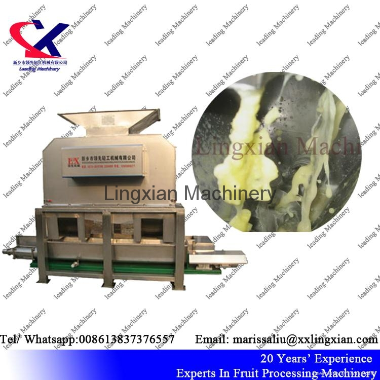 Low Price Industrial Pineapple Juice Production Line  3