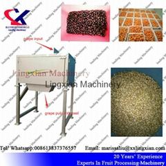 2T per hour Grape  Orange Seed Remover Machine