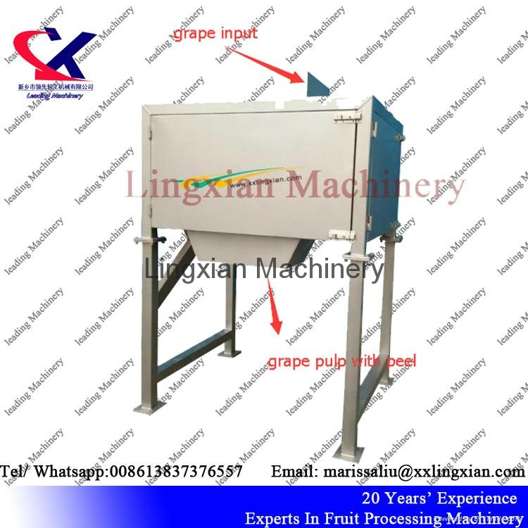 2T per hour Grape  Orange Seed Remover Machine  4