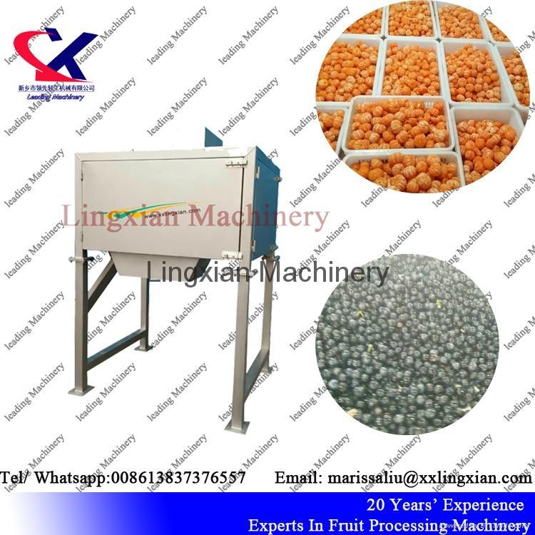 2T per hour Grape  Orange Seed Remover Machine  5