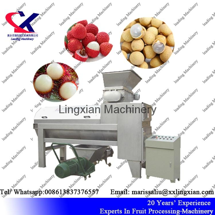 Rambutan Litchi Peeler and Pitter Machine juice making machine 4