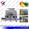 Pineapple Juice Making Machine 3t per
