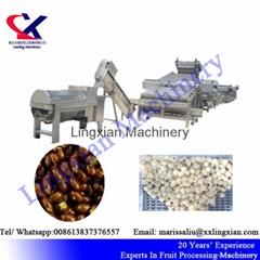 Lychee Juice Production Line Equipment Litchi peeling and juicing Machine