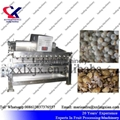 Lychee Juice Production Line Equipment Litchi peeling and juicing Machine 2