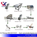 Lychee Juice Production Line Equipment Litchi peeling and juicing Machine 5