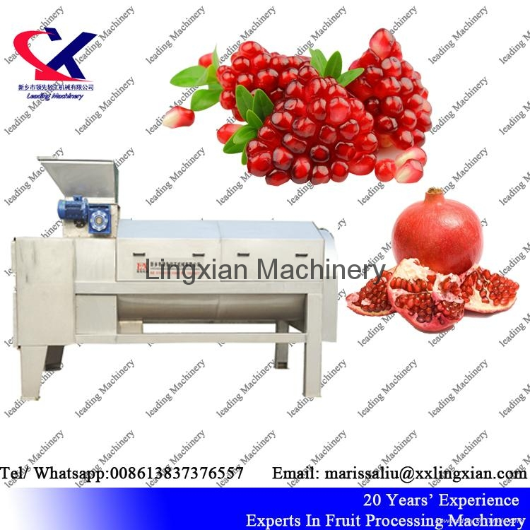 Pomegranate juice Press Machine Screw Juice Press 1