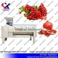 Pomegranate juice Press Machine Screw